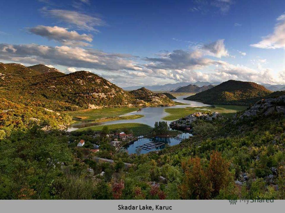 Skadar Lake, Biggest Lake of Balkan