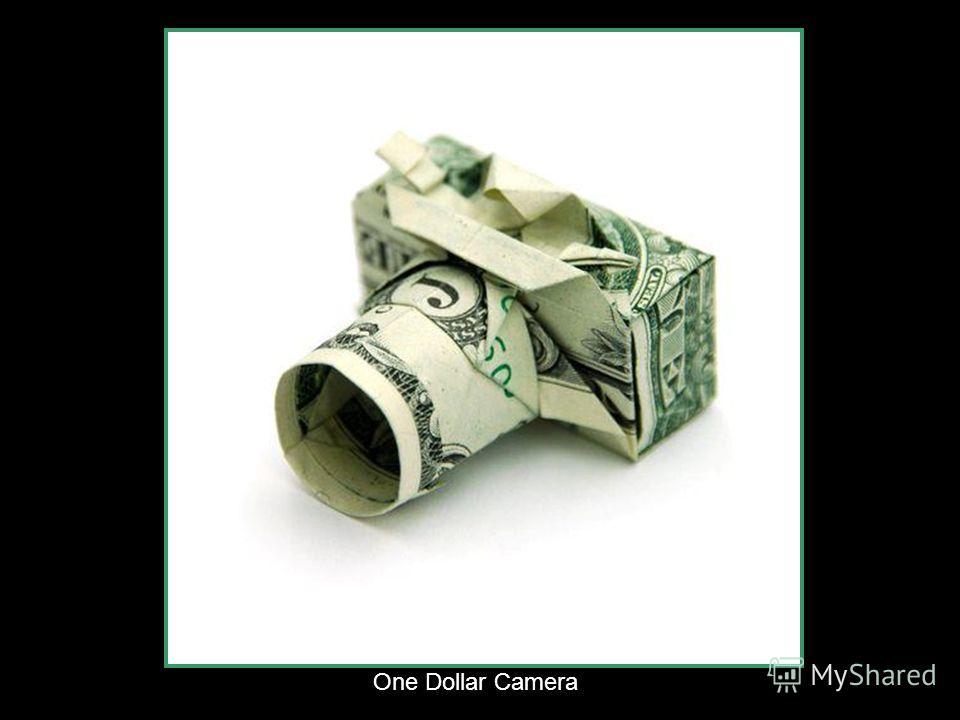 Dollar kois