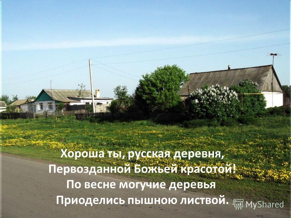 Хороша ты, русская деревня, Первозданной Божьей красотой! По весне могучие деревья Приоделись пышною листвой.