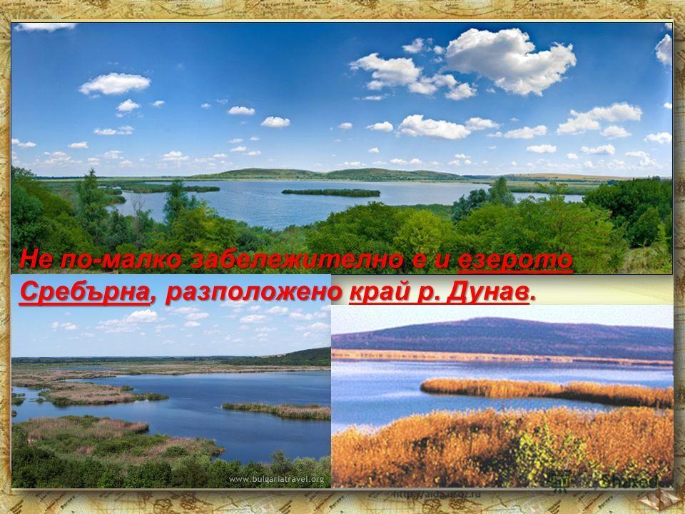 Не по-малко забележително е и езерото Сребърна, разположено край р. Дунав.