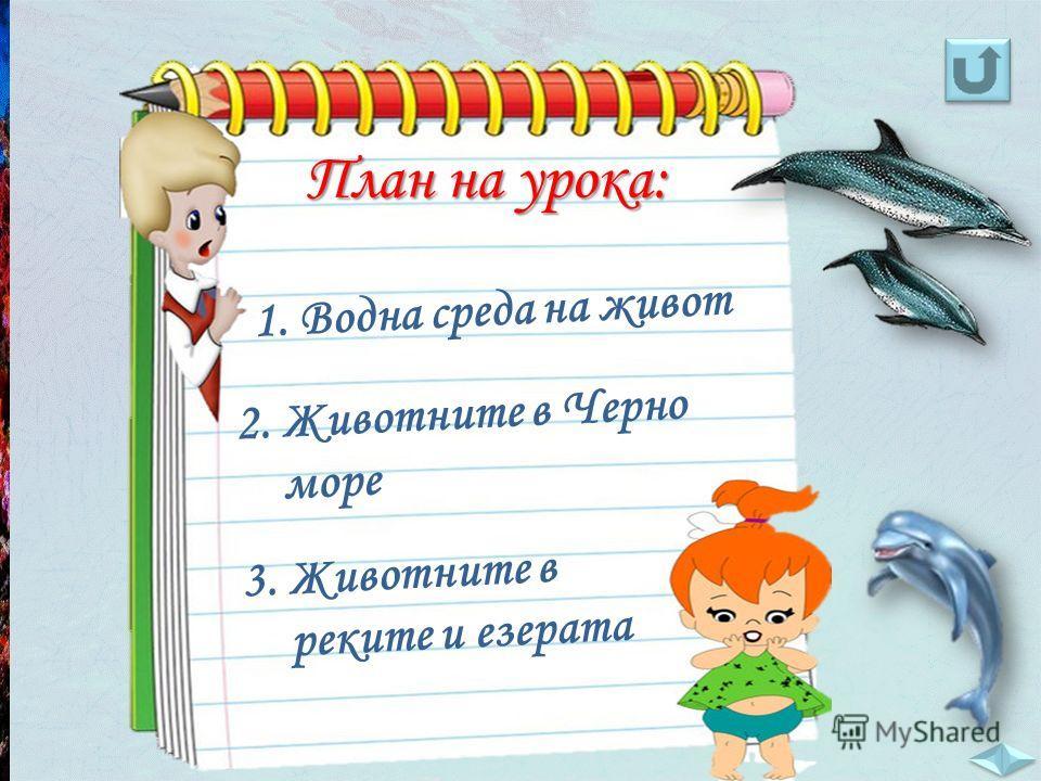 1. Водна среда на живот 2. Животните в Черно море 3. Животните в реките и езерата План на урока: