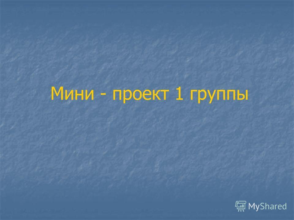 Мини - проект 1 группы