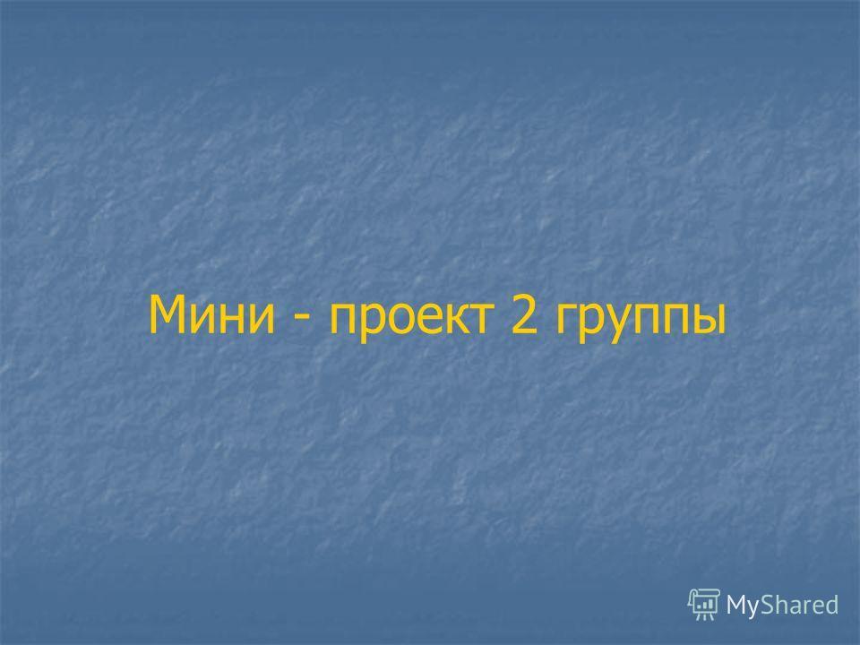 Мини - проект 2 группы