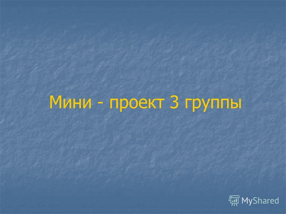 Мини - проект 3 группы