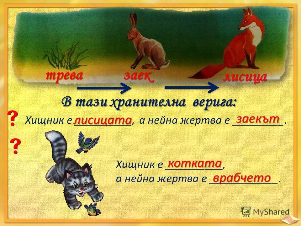 тревазаек лисица В тази хранителна верига: Хищник е __________, а нейна жертва е _________. лисицата заекът Хищник е __________, а нейна жертва е ____________. котката врабчето