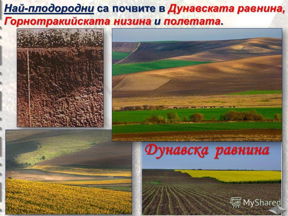 Най-плодородни са почвите в Дунавската равнина, Горнотракийската низина и полетата. Дунавска равнина