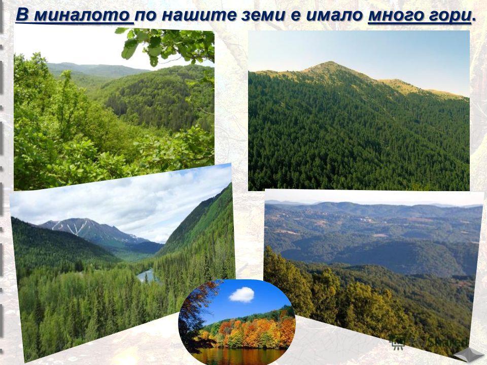 В миналото по нашите земи е имало много гори.