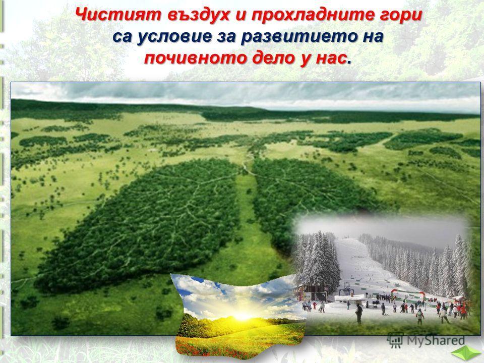 Чистият въздух и прохладните гори са условие за развитието на почивното дело у нас.
