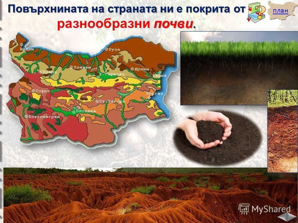 план Повърхнината на страната ни е покрита от почви. разнообразни почви.