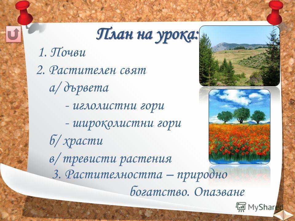 1. Почви 2. Растителен свят а/ дървета - иглолистни гори - широколистни гори б/ храсти в/ тревисти растения 3. Растителността – природно богатство. Опазване