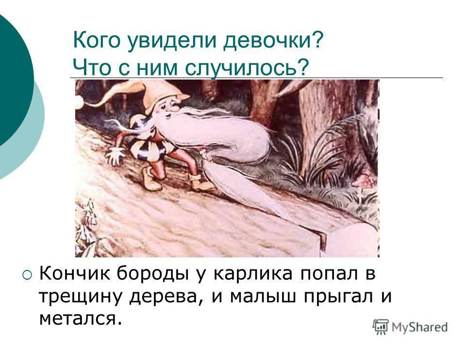 Кого увидели девочки? Что с ним случилось? Кончик бороды у карлика попал в трещину дерева, и малыш прыгал и метался.