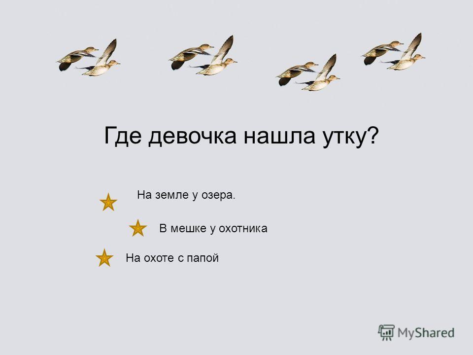 «Анюткина утка» «Снежная книга» «Непонятный зверь» «Приказ на снегу» «Чей нос лучше?» «Плавунчик» «Чьи это ноги?» «Почему чайки белые» «Кузя двухвостый» «Хвосты» «Про двух охотников» «Голубой зверёк» «Лесныедомишки»«Лесныедомишки» «Сова» «Где раки зи