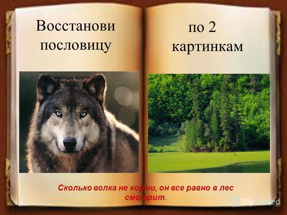 Восстанови пословицу по 2 картинкам Сколько волка не корми, он все равно в лес смотрит.