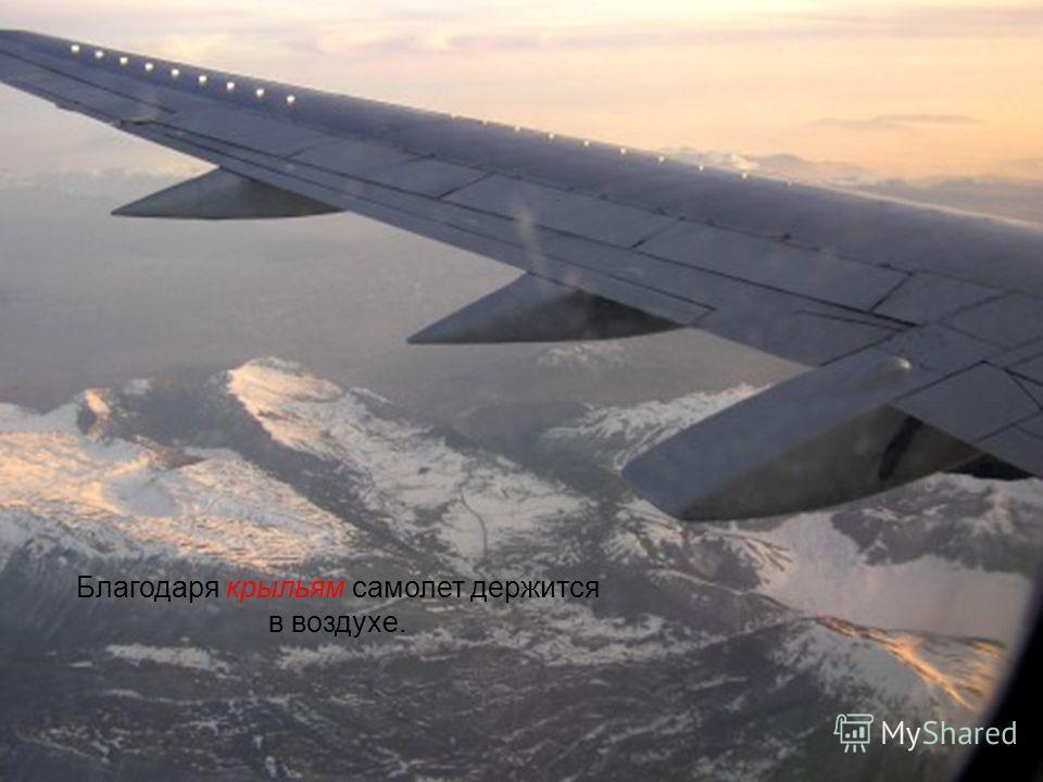 Задняя часть самолета оснащена хвостовым оперением, которое придает машине устойчивость. И крыло, и хвостовое оперение прикрепляются к корпусу самолета фюзеляжу. В нем расположены кабина экипажа, механизмы управления самолетом, салон для пассажиров,