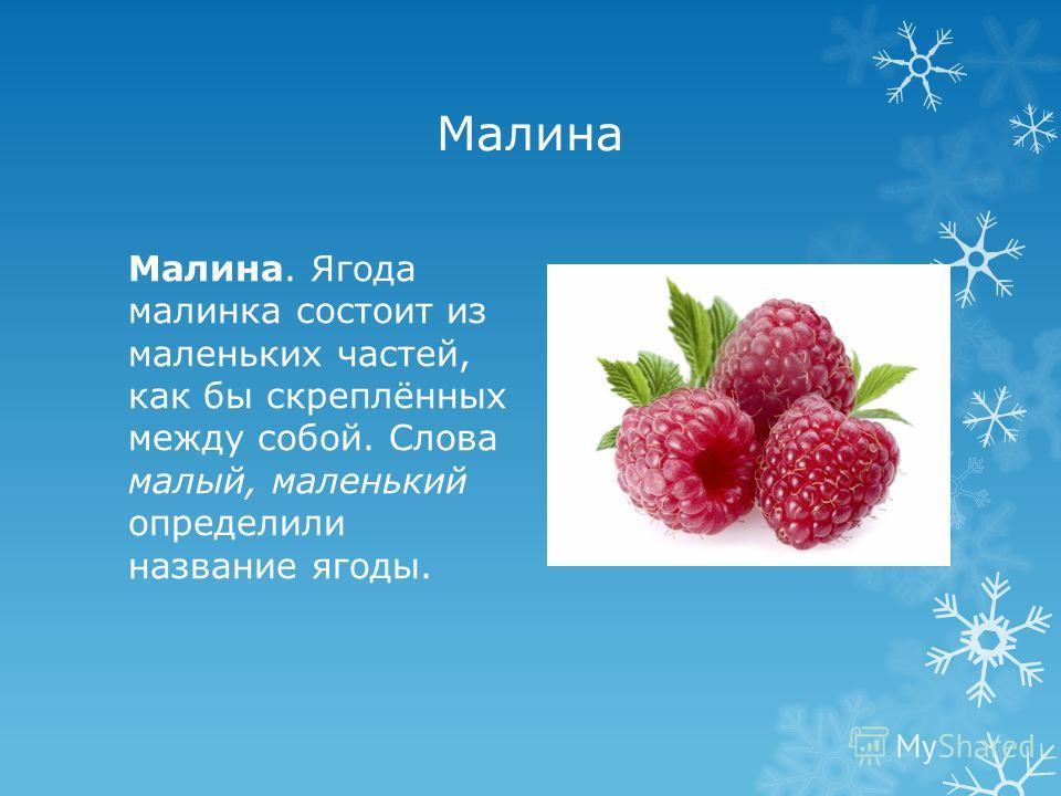 Малина Малина. Ягода малинка состоит из маленьких частей, как бы скреплённых между собой. Слова малый, маленький определили название ягоды.