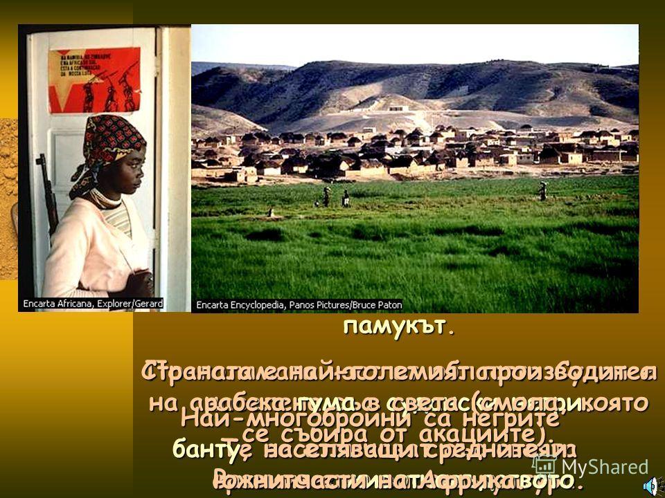 По-голямата част от областта Судан е населена със судански негри. Те се отличават със своята сравнително висока култура. Най-важна земеделска култура е памукът. Страната е най-големият производител на арабска гума в света (смола, която се събира от а