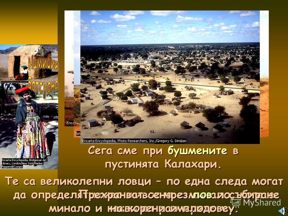 Сега сме при бушмените в пустинята Калахари. Те са великолепни ловци – по една следа могат да определят какво животно е минало, кога е минало и какви са размерите му. Прехранват се чрез лов и събиране на корени и плодове.