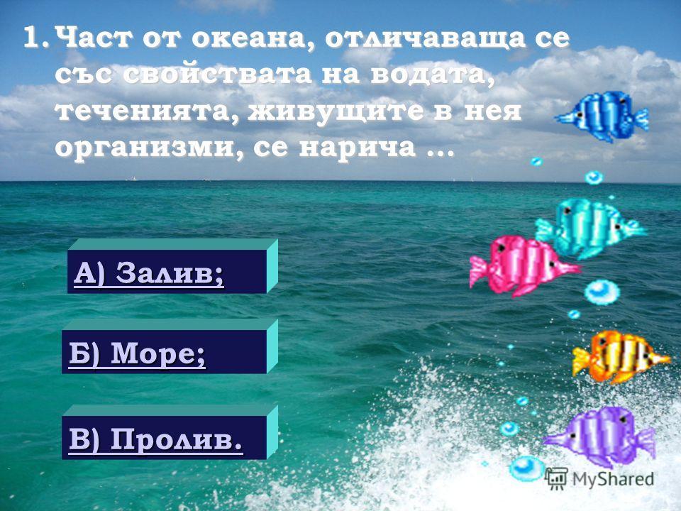 Тестови задачи по темата: «Сушата и водата на Земята» Автор: Ивелина Димитрова учител по история и география