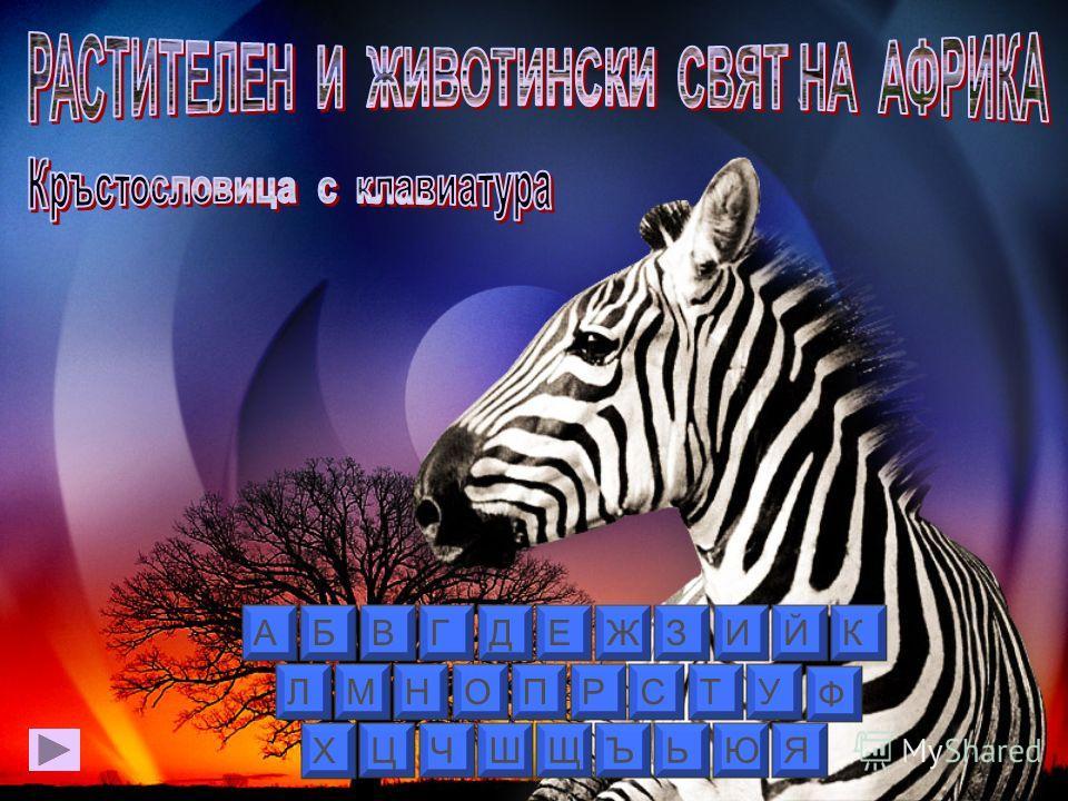 ЙК ЛМНОПРСТУ Ф Х ЦЧШЩЪЬЮЯ АБВГДЕЖЗИ