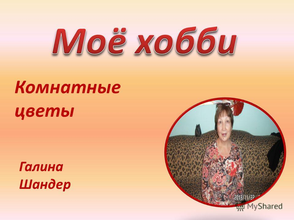 Комнатные цветы Галина Шандер
