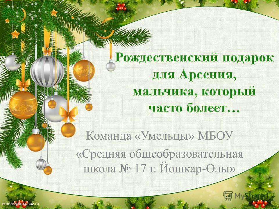 Команда «Умельцы» МБОУ «Средняя общеобразовательная школа 17 г. Йошкар-Олы»