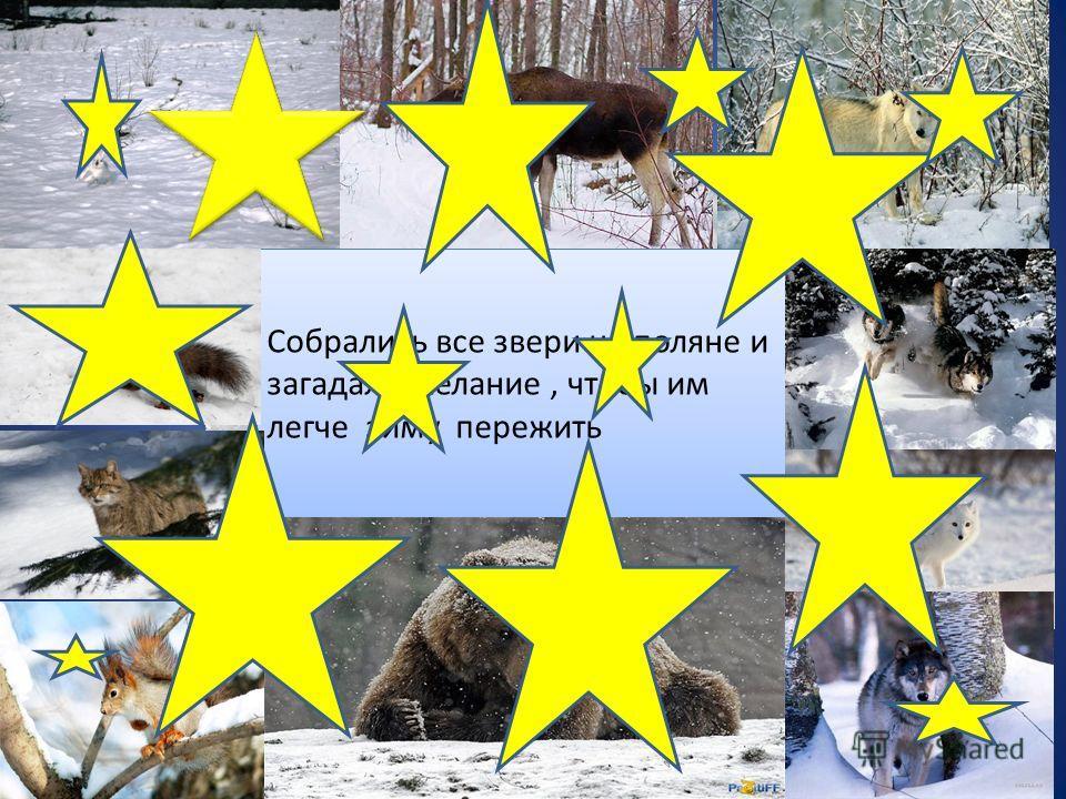 Собрались все звери на поляне и загадали желание, чтобы им легче зиму пережить Собрались все звери на поляне и загадали желание, чтобы им легче зиму пережить