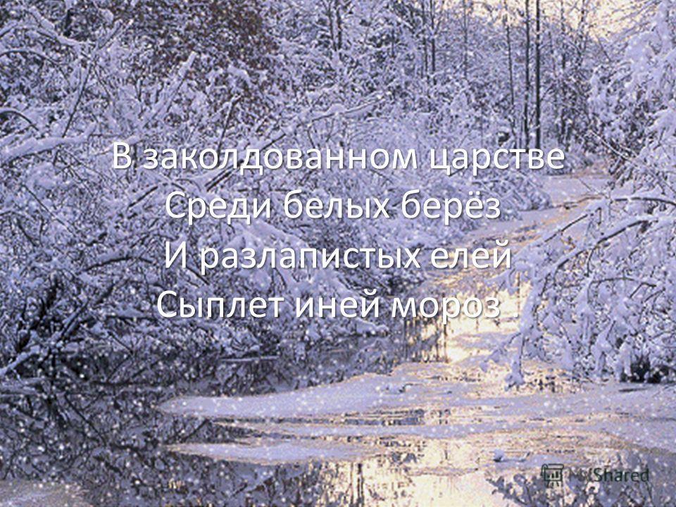 В заколдованном царстве Среди белых берёз И разлапистых елей Сыплет иней мороз.