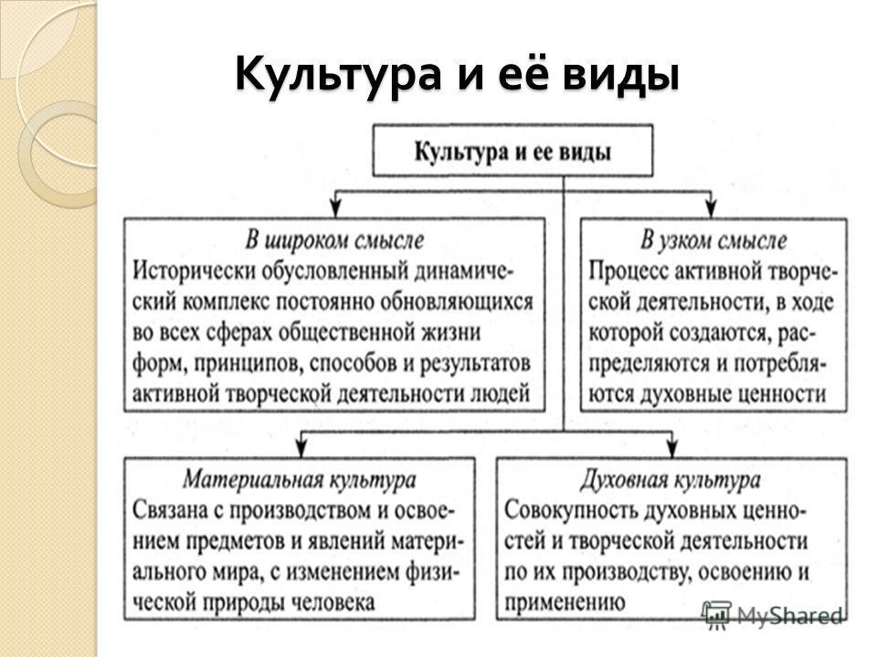 Культура и её виды Культура и её виды