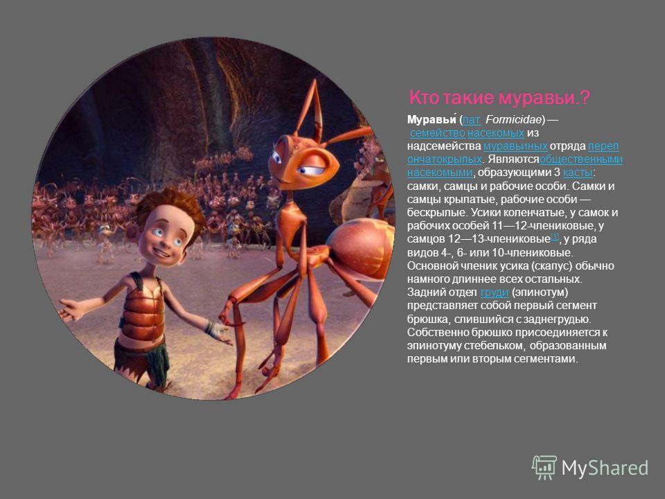 Кто такие муравьи.? Муравьи́ (лат. Formicidae) семейство насекомых из надсемейства муравьиных отряда переп ончатокрылых. Являютсяобщественными насекомыми, образующими 3 касты: самки, самцы и рабочие особи. Самки и самцы крылатые, рабочие особи бескры