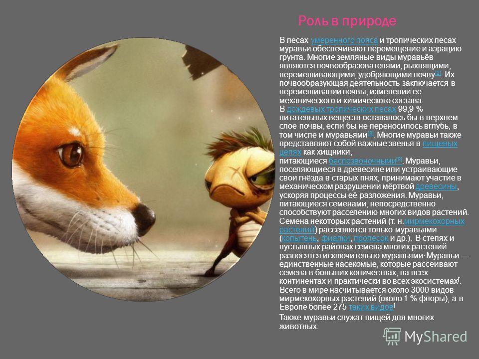 Роль в природе В лесах умеренного пояса и тропических лесах муравьи обеспечивают перемещение и аэрацию грунта. Многие земляные виды муравьёв являются почвообразователями, рыхлящими, перемешивающими, удобряющими почву [2]. Их почвообразующая деятельно