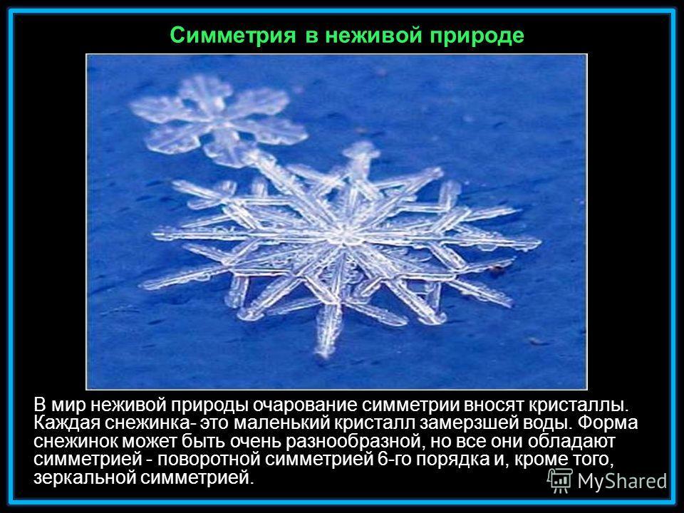 В мир неживой природы очарование симметрии вносят кристаллы. Каждая снежинка- это маленький кристалл замерзшей воды. Форма снежинок может быть очень разнообразной, но все они обладают симметрией - поворотной симметрией 6-го порядка и, кроме того, зер