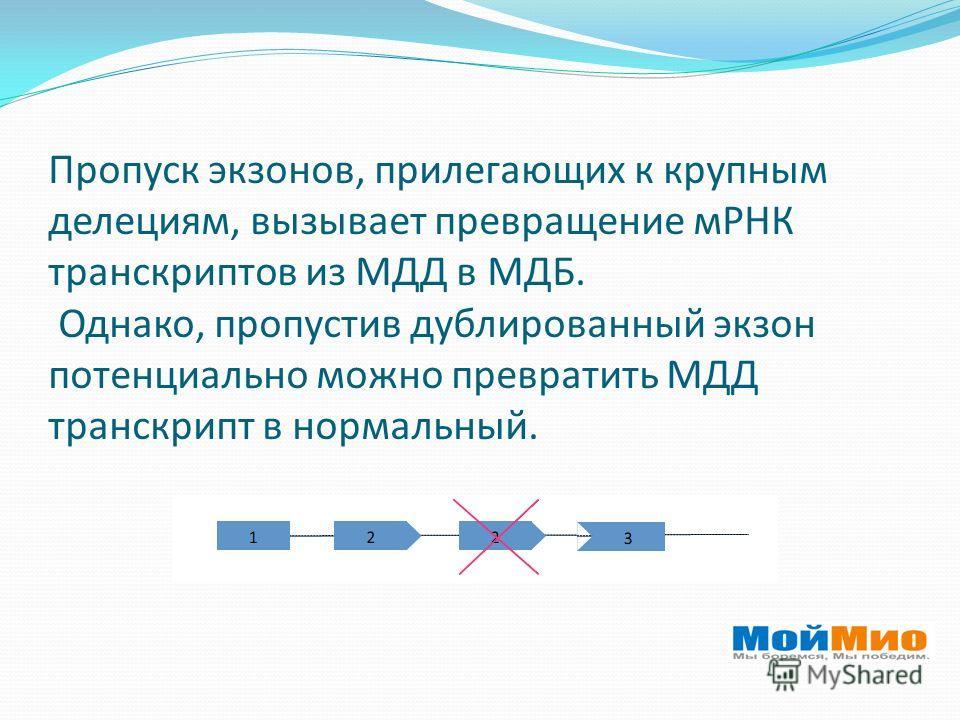 Пропуск экзонов, прилегающих к крупным делециям, вызывает превращение мРНК транскриптов из МДД в МДБ. Однако, пропустив дублированный экзон потенциально можно превратить МДД транскрипт в нормальный.