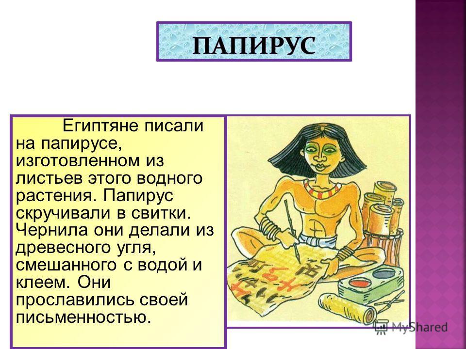 Египтяне писали на папирусе, изготовленном из листьев этого водного растения. Папирус скручивали в свитки. Чернила они делали из древесного угля, смешанного с водой и клеем. Они прославились своей письменностью.