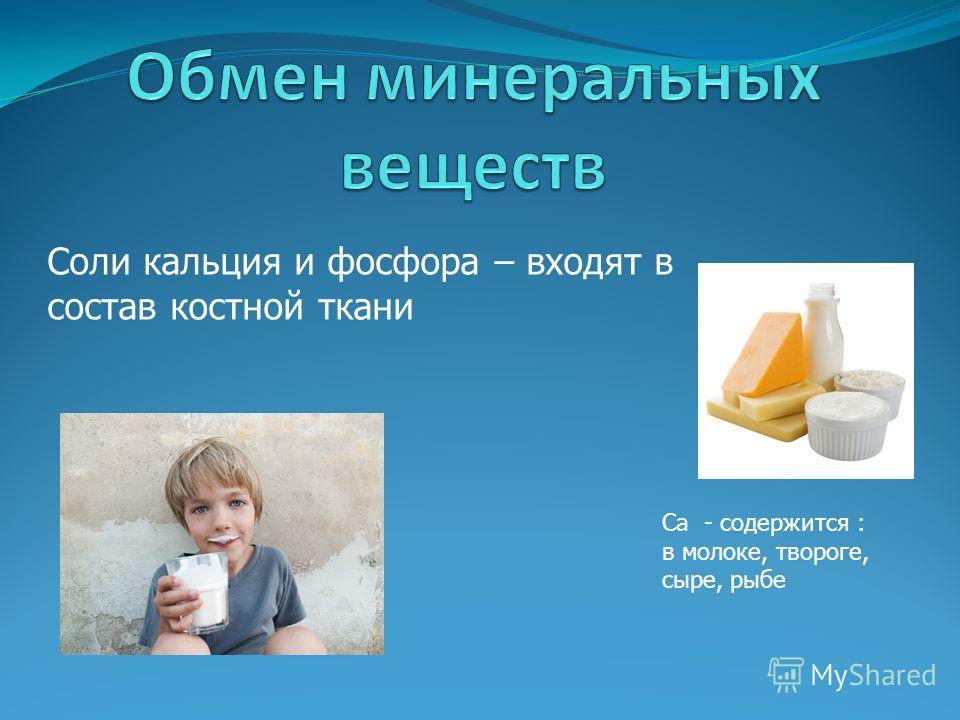 Соли кальция и фосфора – входят в состав костной ткани Ca - содержится : в молоке, твороге, сыре, рыбе