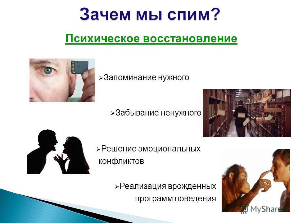 Психическое восстановление Запоминание нужного Забывание ненужного Решение эмоциональных конфликтов Реализация врожденных программ поведения