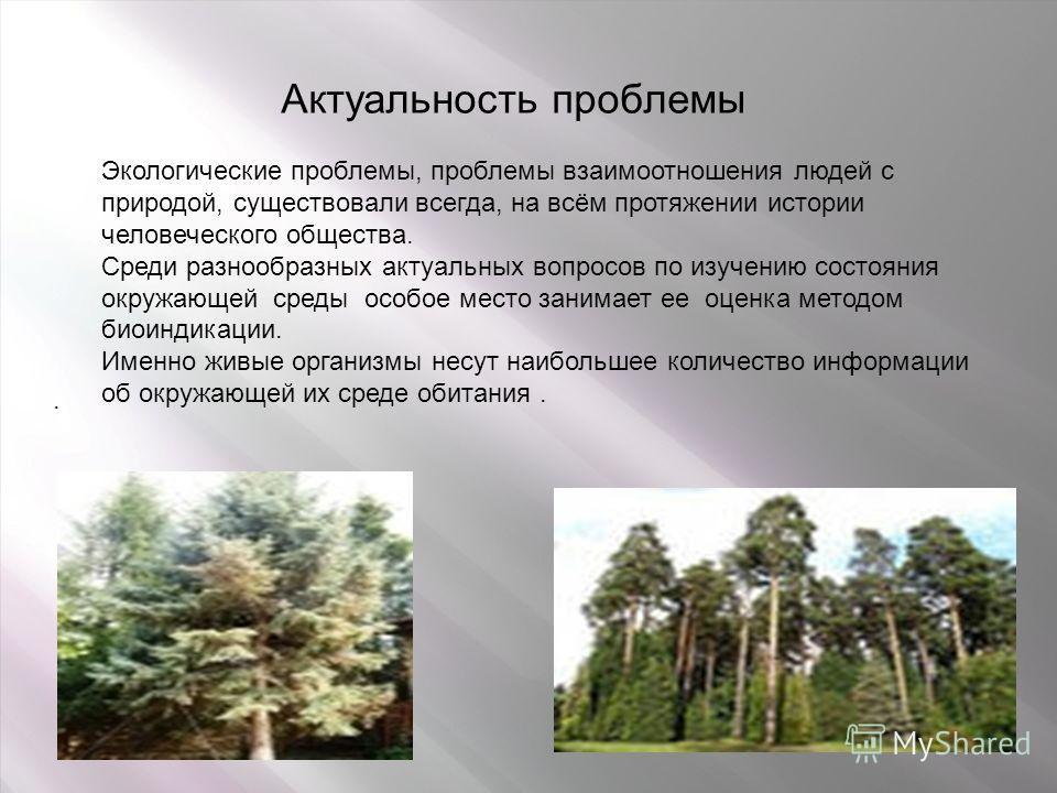 Актуальность проблемы. Экологические проблемы, проблемы взаимоотношения людей с природой, существовали всегда, на всём протяжении истории человеческого общества. Среди разнообразных актуальных вопросов по изучению состояния окружающей среды особое ме