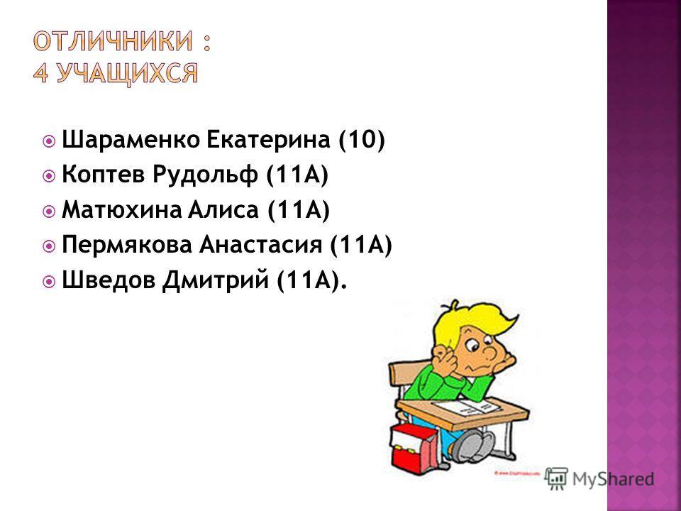 Шараменко Екатерина (10) Коптев Рудольф (11А) Матюхина Алиса (11А) Пермякова Анастасия (11А) Шведов Дмитрий (11А).