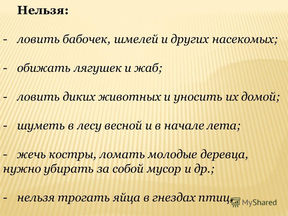 «Будь природе другом»