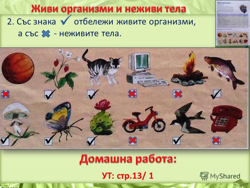 2. Със знака отбележи живите организми, а със - неживите тела. УТ: стр.13/ 1