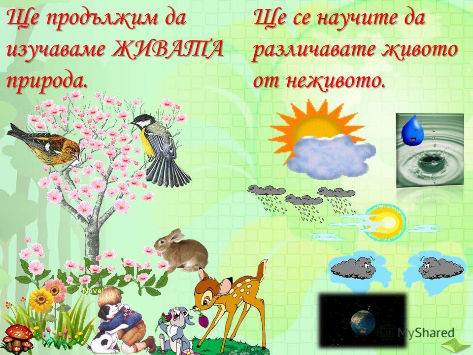 Ще продължим да изучаваме ЖИВАТА природа. Ще се научите да различавате живото от неживото.