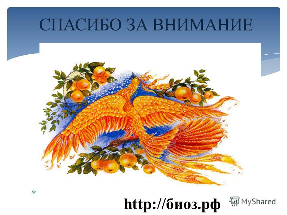СПАСИБО ЗА ВНИМАНИЕ http://биоз.рф