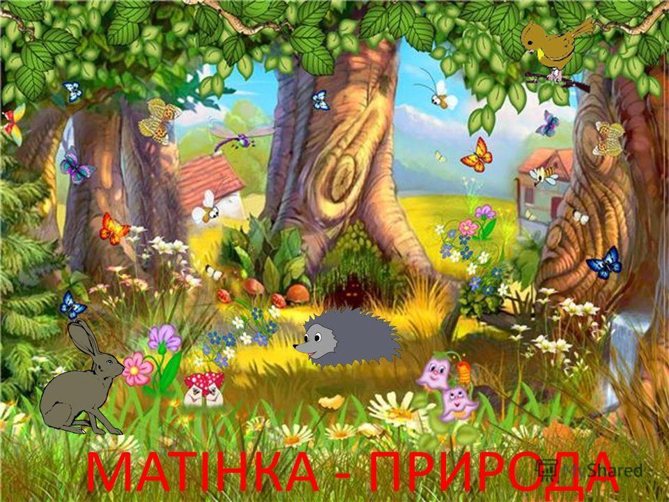 МАТІНКА - ПРИРОДА