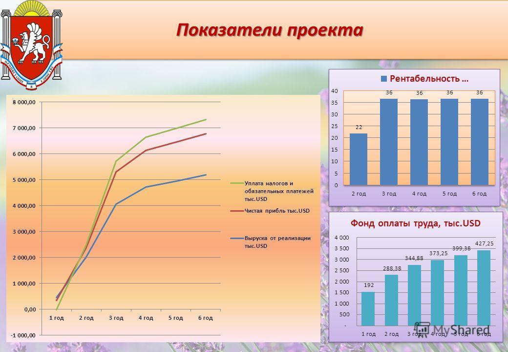 Показатели проекта