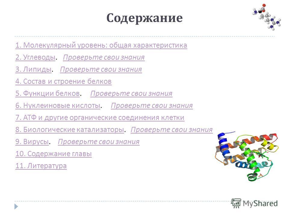 Содержание 1. Молекулярный уровень : общая характеристика 2. Углеводы 2. Углеводы. Проверьте свои знания Проверьте свои знания 3. Липиды 3. Липиды. Проверьте свои знания Проверьте свои знания 4. Состав и строение белков 5. Функции белков 5. Функции б
