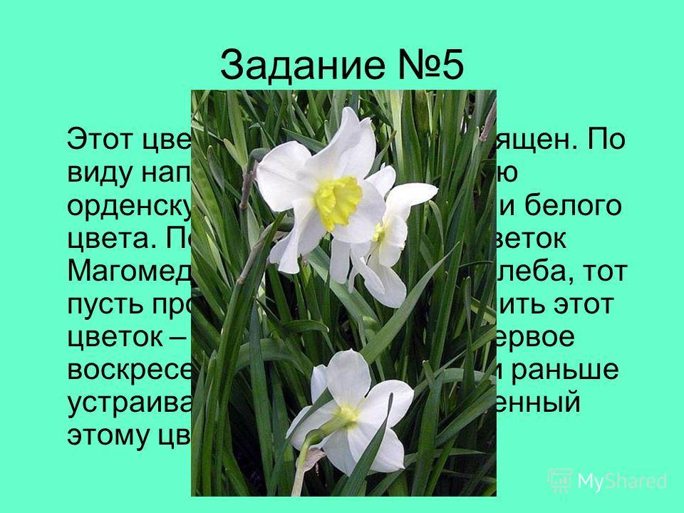 Задание 5 Этот цветок очень красив и изящен. По виду напоминает пятиконечную орденскую розетку жёлтого или белого цвета. По легенде, про этот цветок Магомед сказал: «У кого два хлеба, тот пусть продаст один, чтобы купить этот цветок – пищу для души».