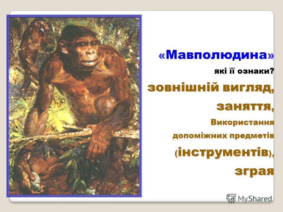 Робота над поняттями людина вміла, людина розумна людське стадо (зграя) знаряддя праці господарська діяльність первіснообщинний лад