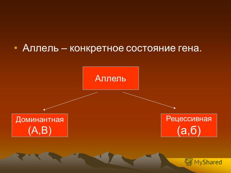 Аллель – конкретное состояние гена. Аллель Доминантная (А,В) Рецессивная (а,б)
