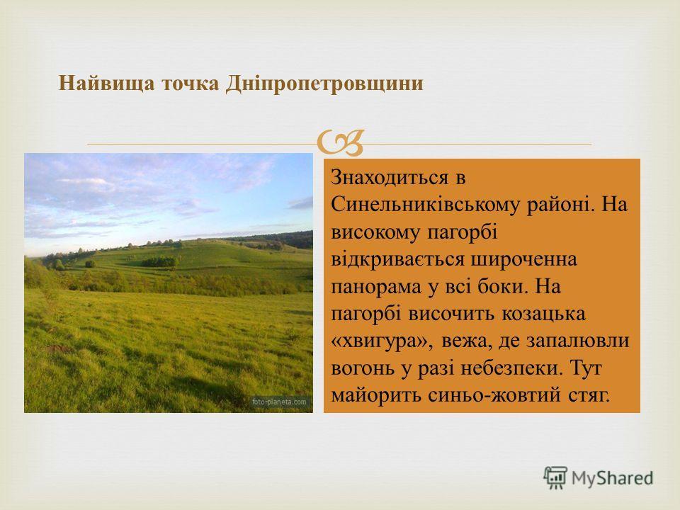 Найвища точка Дніпропетровщини Знаходиться в Синельниківському районі. На високому пагорбі відкривається широченна панорама у всі боки. На пагорбі височить козацька « хвигура », вежа, де запалювли вогонь у разі небезпеки. Тут майорить синьо - жовтий