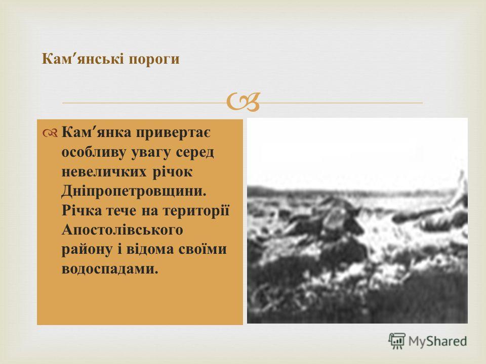 Кам янка привертає особливу увагу серед невеличких річок Дніпропетровщини. Річка тече на території Апостолівського району і відома своїми водоспадами. Кам янські пороги