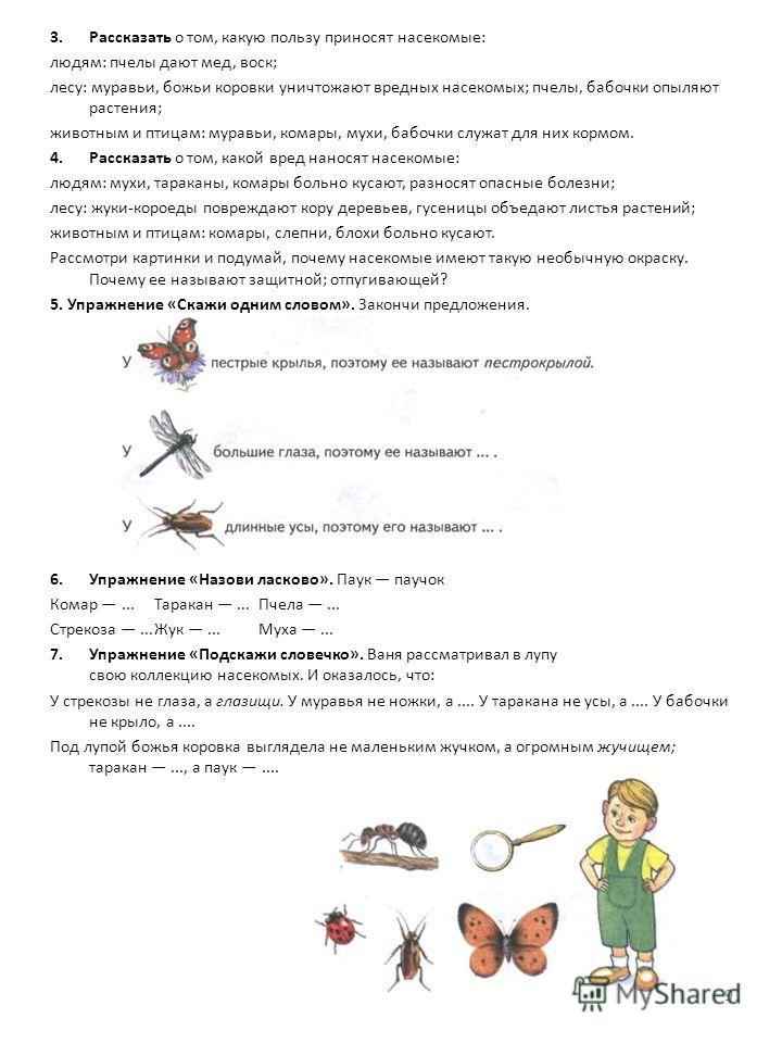 3.Рассказать о том, какую пользу приносят насекомые: людям: пчелы дают мед, воск; лесу: муравьи, божьи коровки уничтожают вредных насекомых; пчелы, бабочки опыляют растения; животным и птицам: муравьи, комары, мухи, бабочки служат для них кормом. 4.
